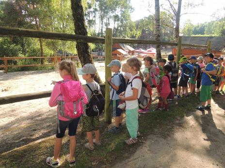 Výlet 1.C a 1.B okolo Boleveckých rybníků