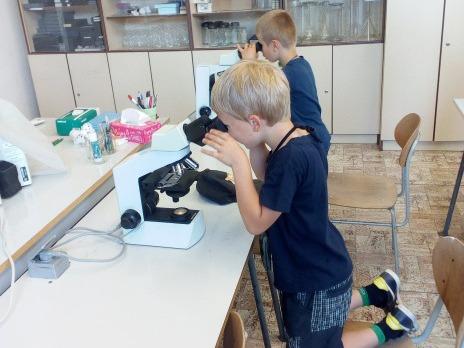 Život pod mikroskopem