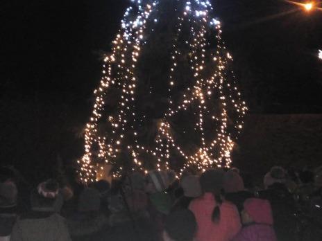 Rozsvícení vánočního stromku v Liticích