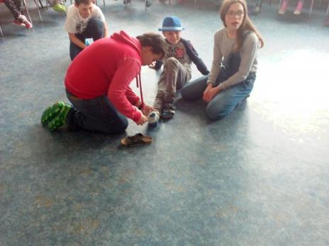Mladí záchranáři v ŠD