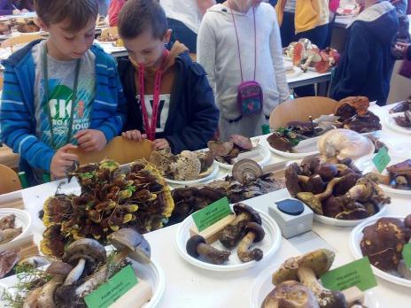 ŠD na výstavě hub