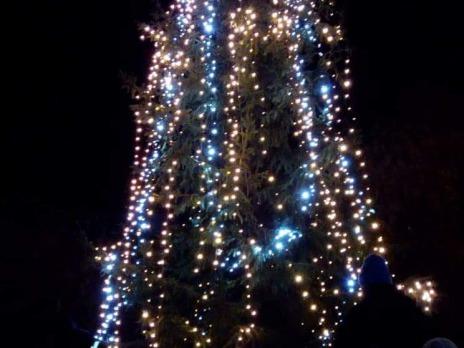 Rozsvícení vánočního stromečku v Liticích