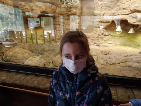 2. B v Zoo