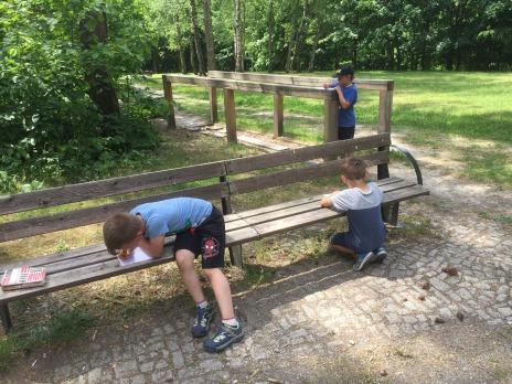 Prvňáčci v Borském parku